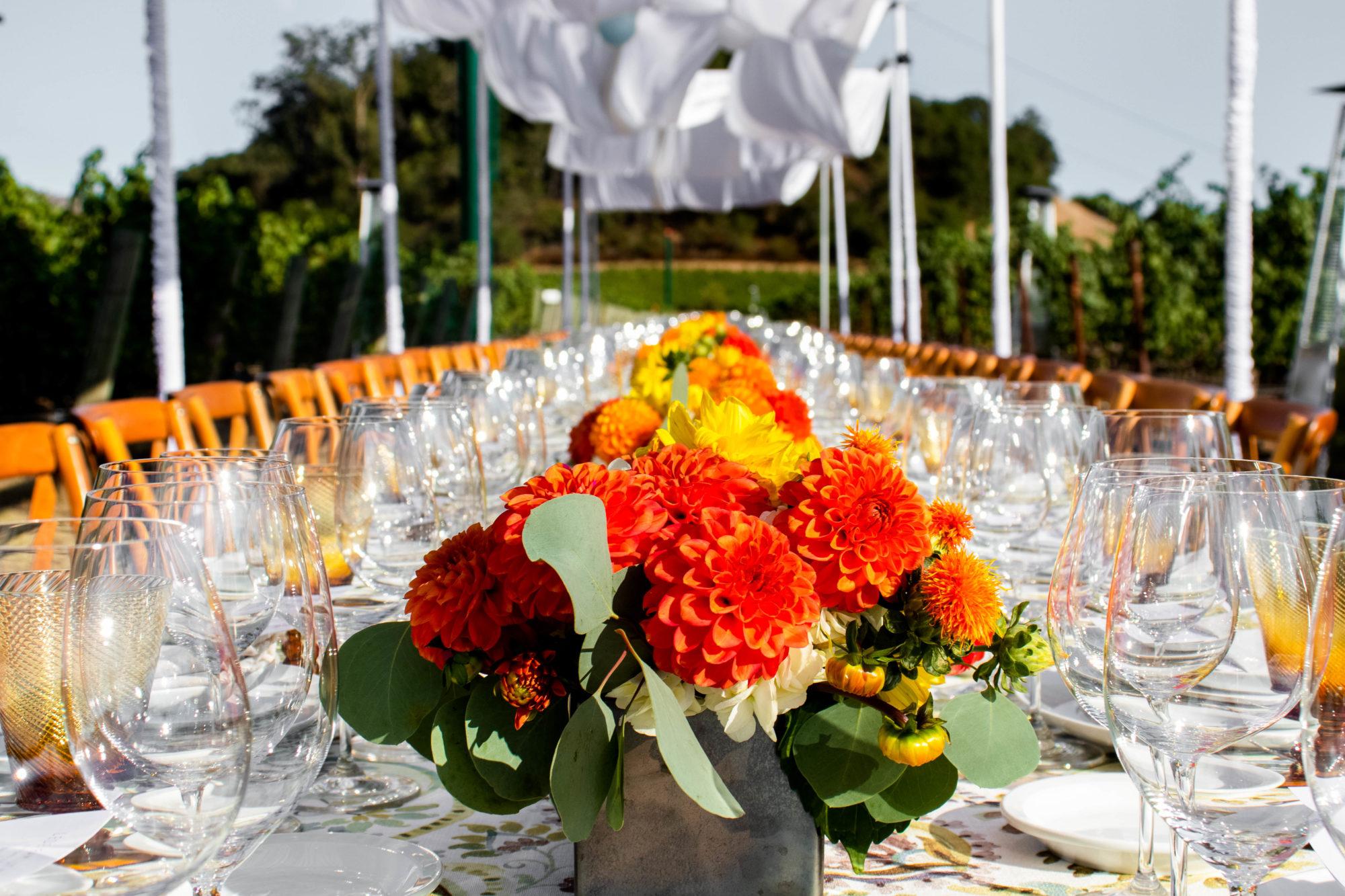 Summer Wine Club Dinner