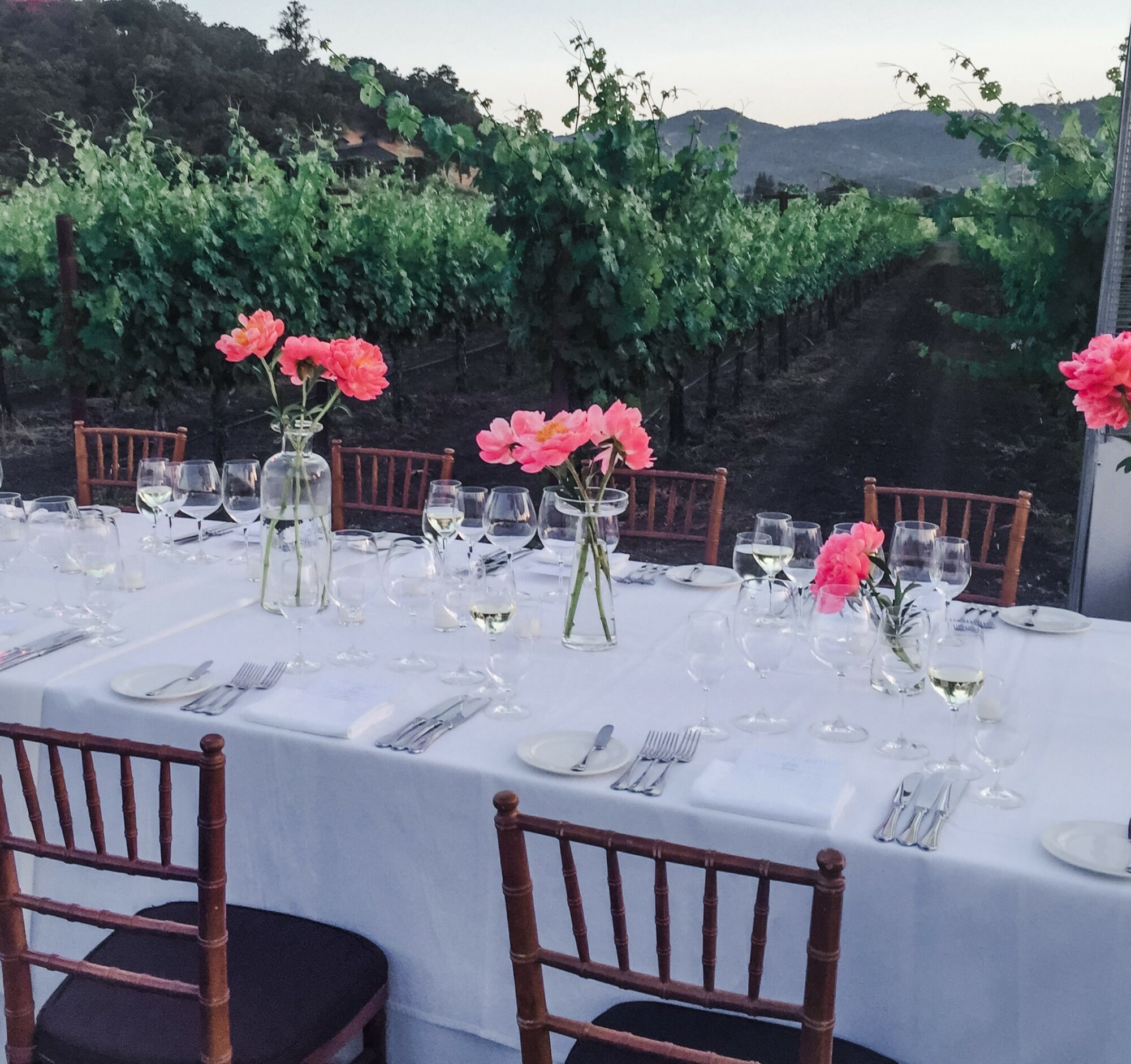Poetic Elegance in the Vineyard